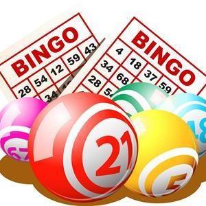 bingo-06.jpg