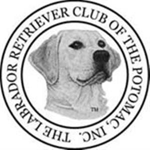 American Kennel Club - The Labrador Retriever Club of the