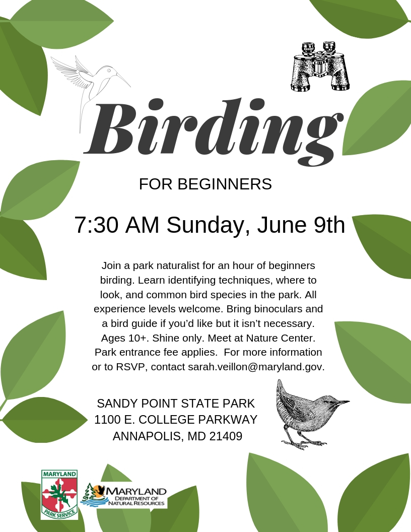 MD Department of Information Technology - Birding for Beginners