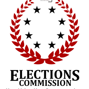 elections-logo-your-voice-your-reps.png