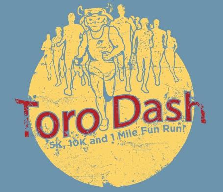 Toro Dash 2016