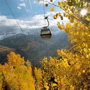 gondola-closing-800x800.jpg