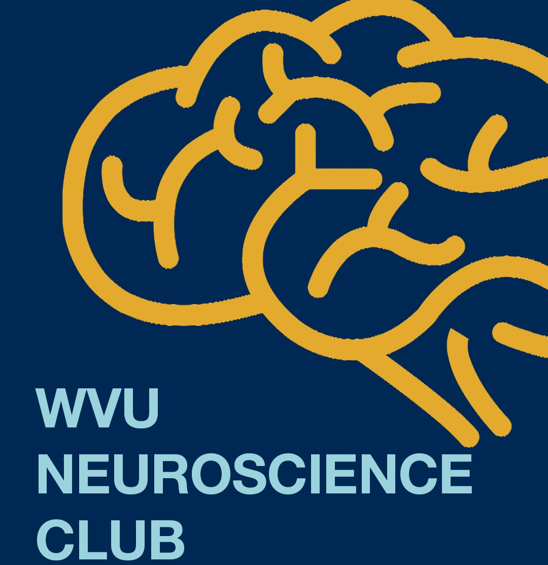 undergrad_neuro_club.jpg