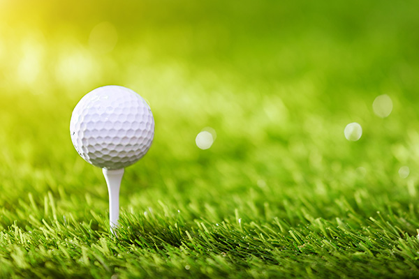 Community Calendar Lehigh Valley Amputee Support Group 11th Annual Golf Outing